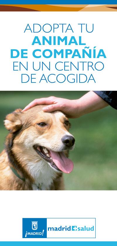adopcion_perro_2012-1