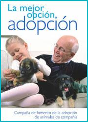 La mejor opción, la adopción