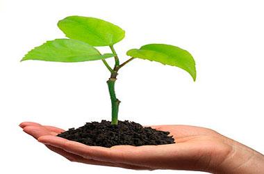 Interactivos de salud ambiental
