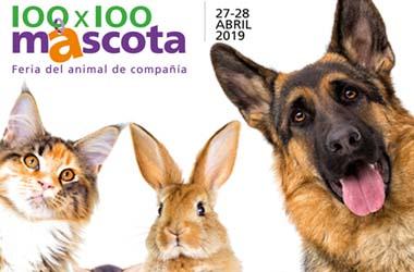 Cien x cien mascotas