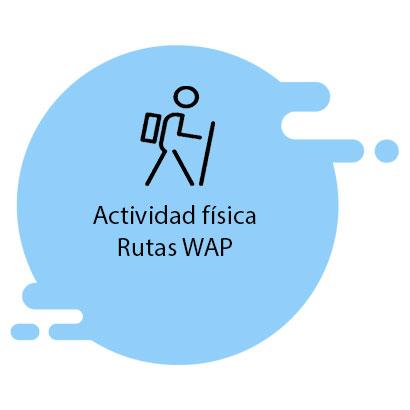 Actividad física, rutas saludables. walking people